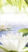 Kersamin_nature_lotus_panno2